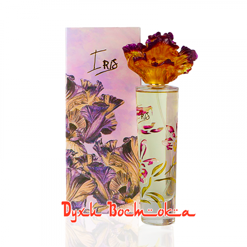 Iris (Ирис)